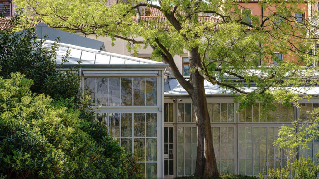The greenhouses of Venice are transformed into libraries