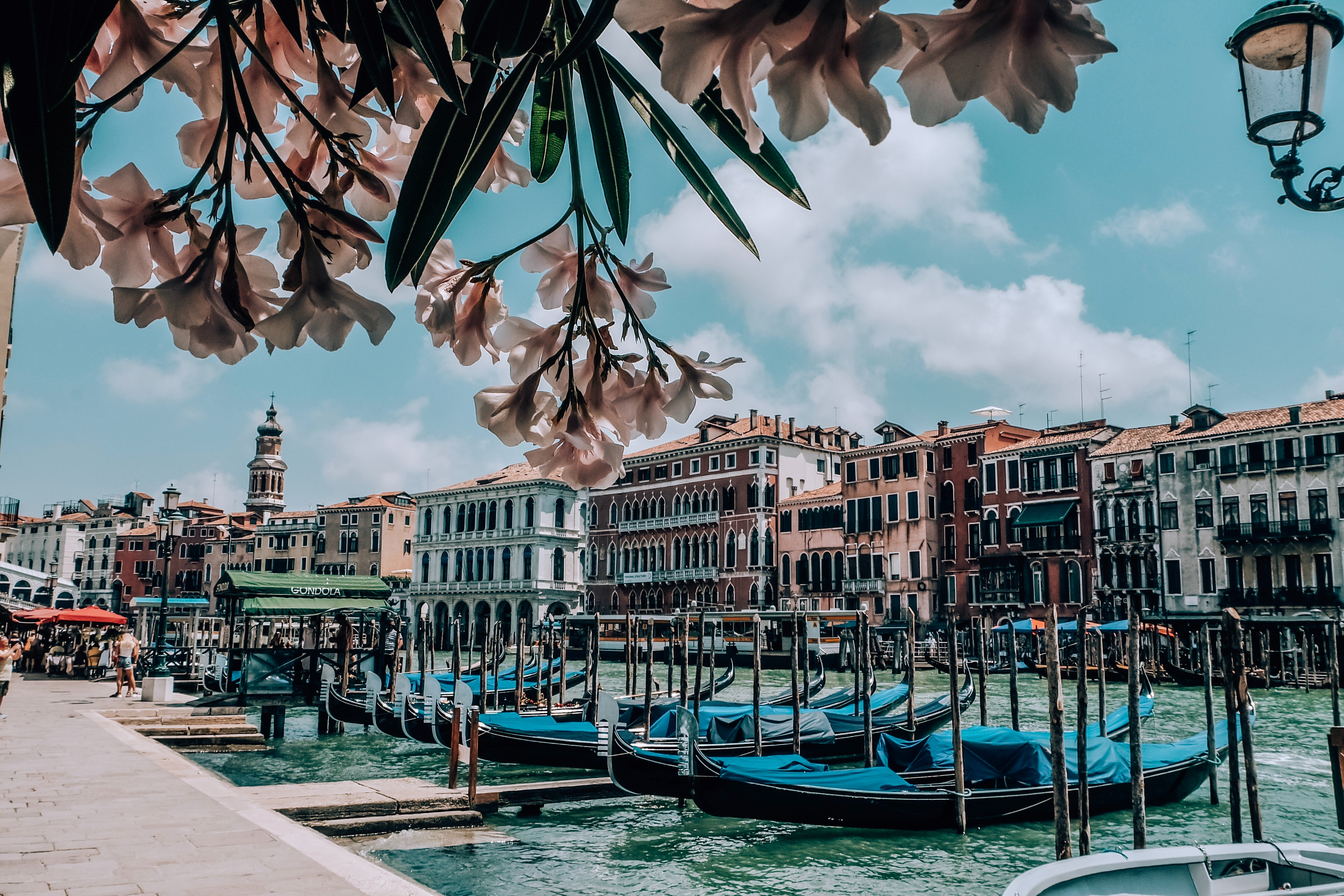 Tourism in Venice starts with young people