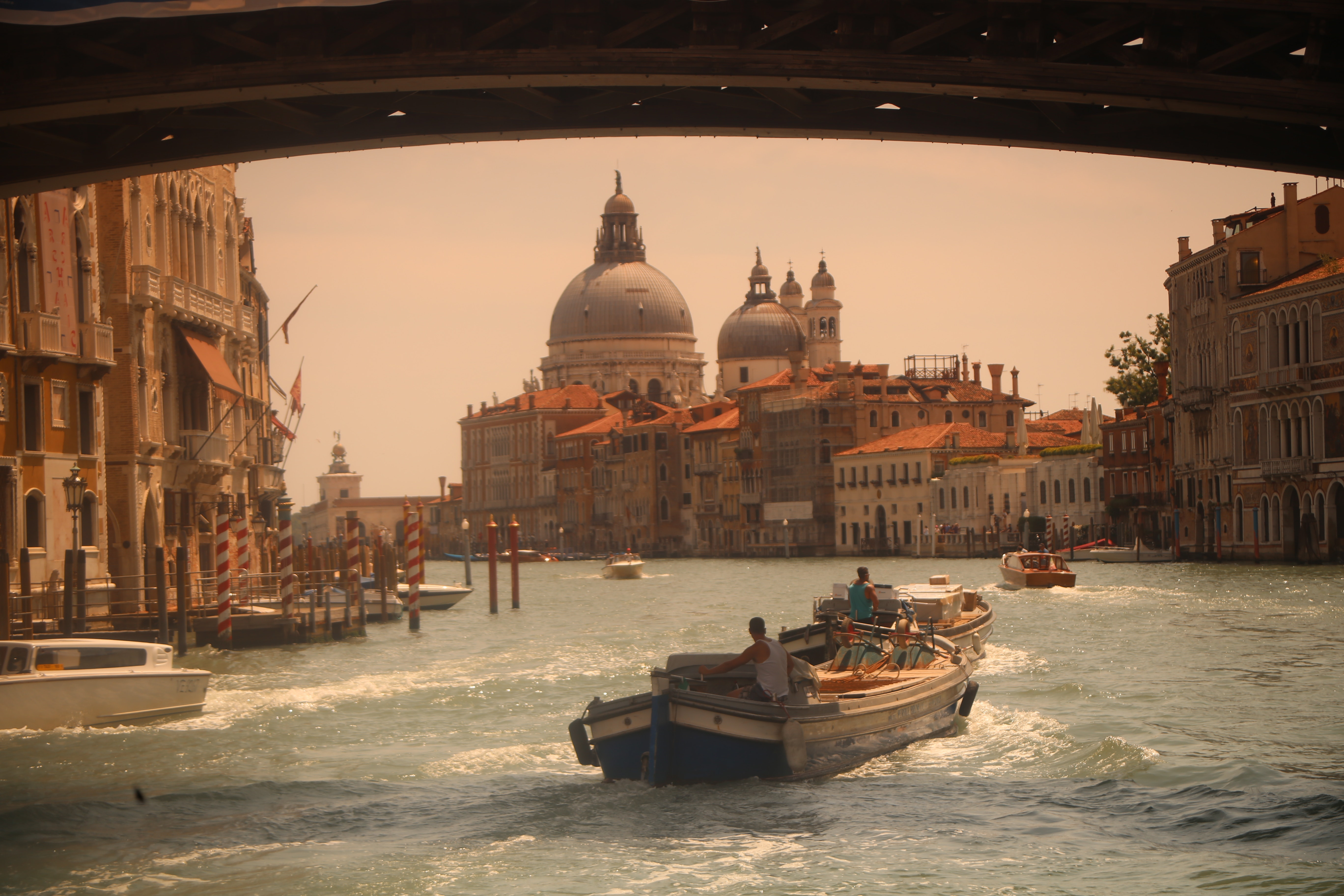 The treasures of the gulf of Venice